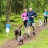 Dalby Forest Canicross