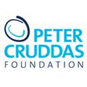 Peter Cruddas Foundation Icon