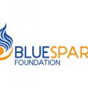 BlueSpark Foundation Icon