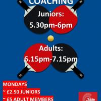 Junior Table Tennis Coaching
