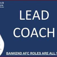 Lead Coach (Mini Stars)