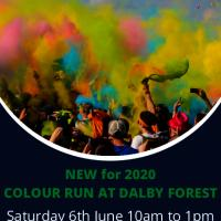 Dalby Forest Colour Run 2020
