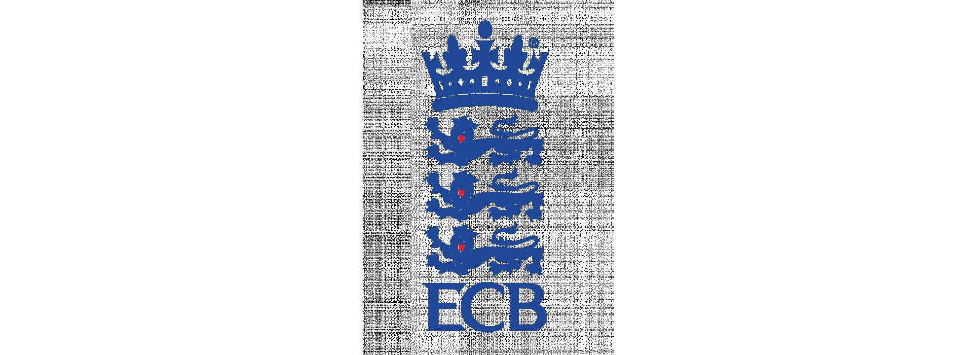 City Programme Executive Banner