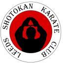 Shotokan karate training Icon