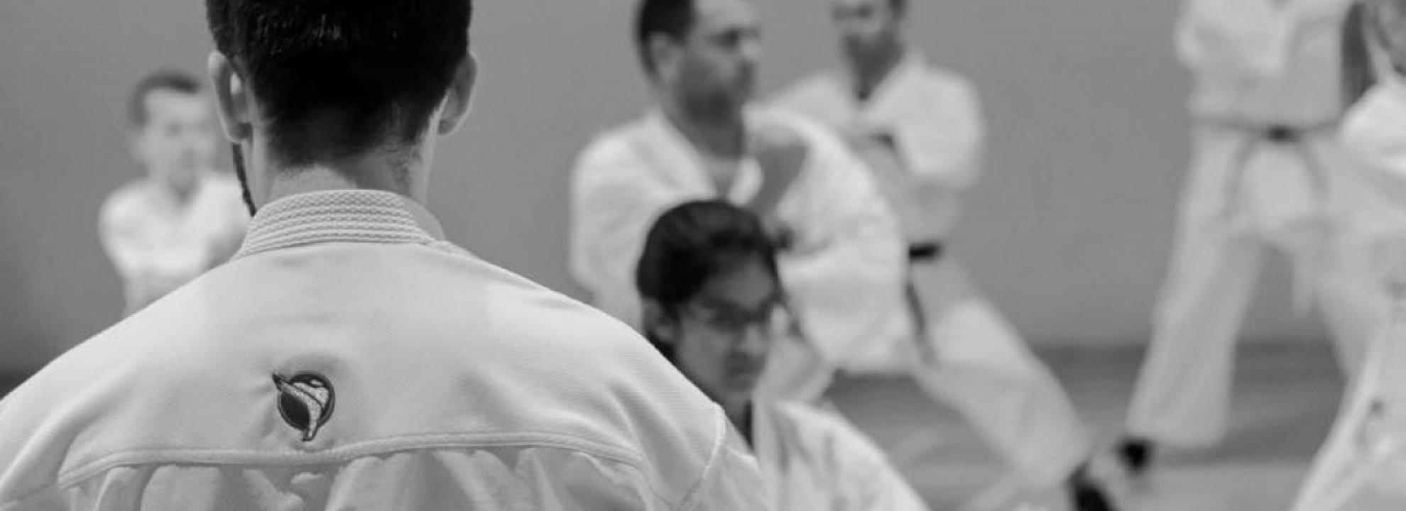 Shotokan karate training Banner